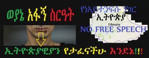 13718112_608021232696544_729113258_o